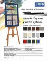 AMSCO Windows Painted Options Flyer
