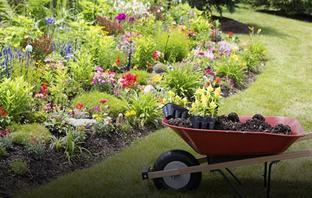 Outdoor & Gardening Tools