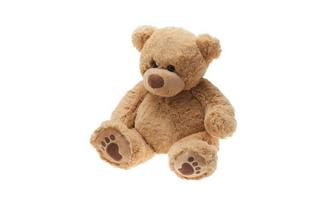 TEMPUR® Plush Teddy
