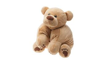 TEMPUR® Plush Pillow Bear