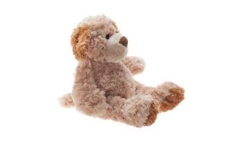 TEMPUR® Plush Dog