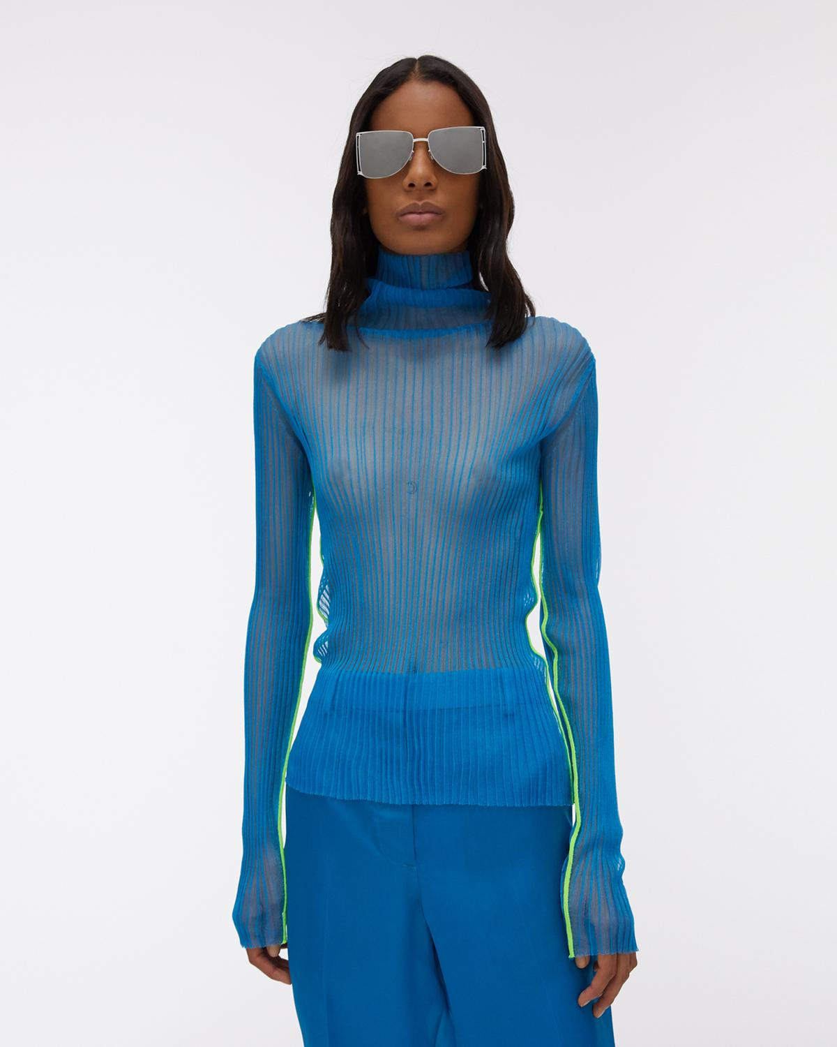 Sheer Ribbed Turtleneck