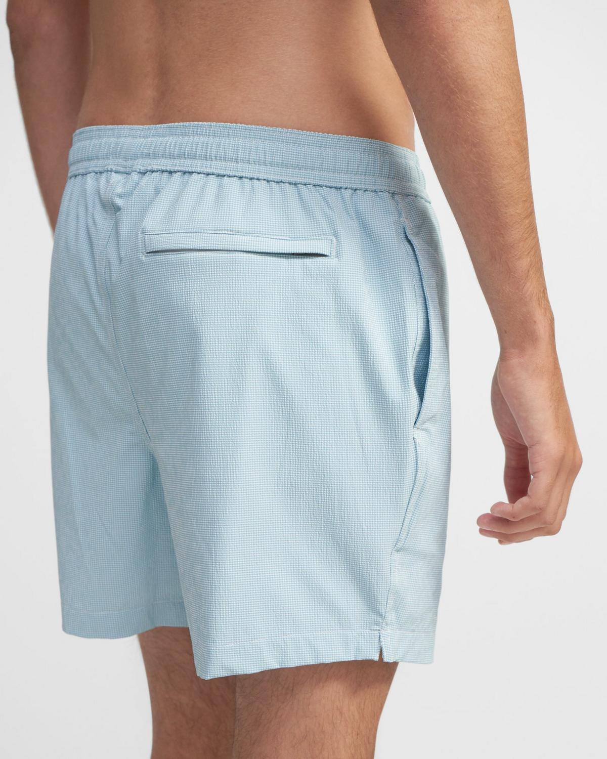 Onia x Theory Charles Swim Trunk