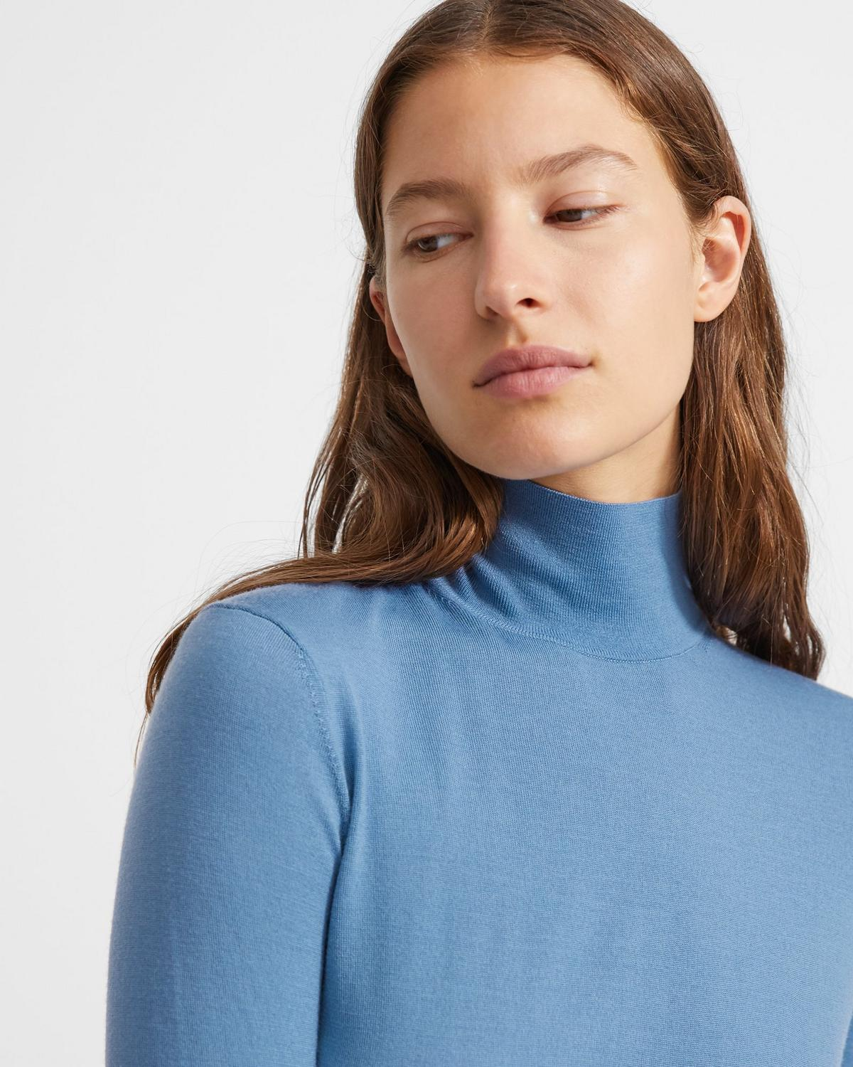 Regal Wool Turtleneck Sweater