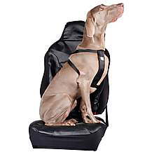 image of Halfords XL Dog Car Harness