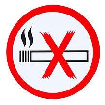 image of No Smoking Car Sticker - Small