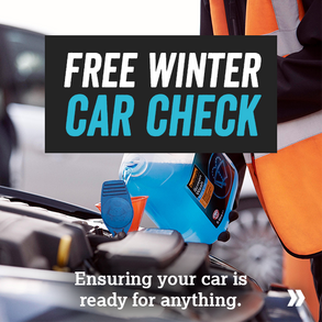 Free Winter Car check