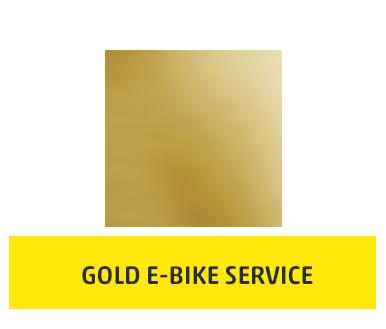 Gold E-Bike Service