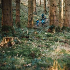 Bristol - Forest of Dean