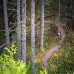 Moray Monster Trails