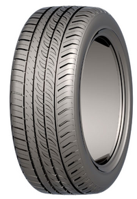 Autogrip P308 Plus (215/65 R15 100H) XL