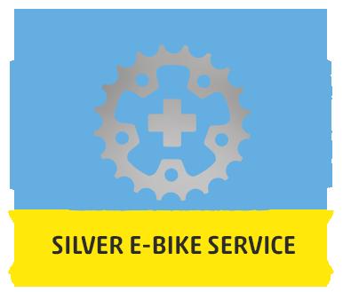 Silver E-Bike Service