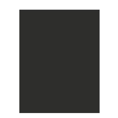 echomaster reversing camera