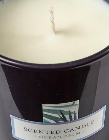 Ocean Palm Candle