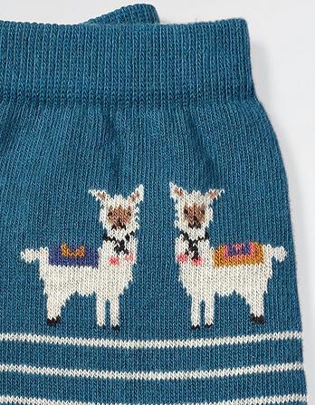One Pack Llama Stripe Socks
