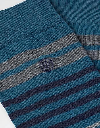 One Pack Ted Stripe Socks