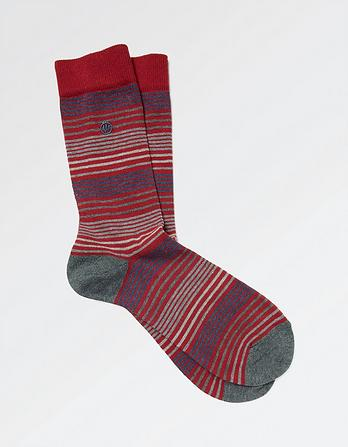 One Pack Lewis Stripe Socks