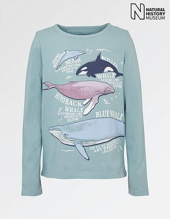 Natural History Museum Ocean Giants T-Shirt