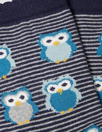 One Pack Owl Socks