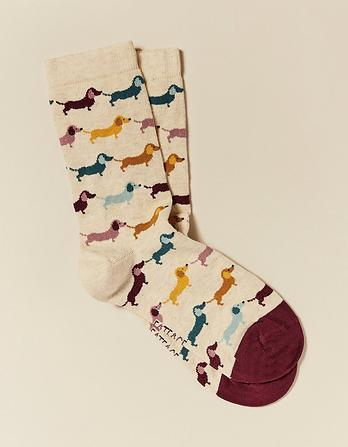 One Pack Multi Dogs Socks