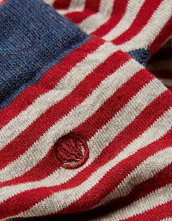 One Pack Finnegan Stripe Socks