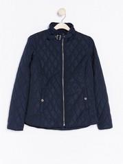 Blue Padded Jacket  Blue