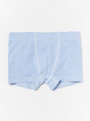 Striped Boxer Shorts  Blue