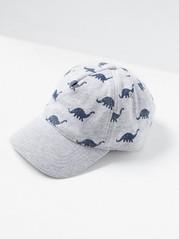 Cap with Dinosaur Pattern Grey