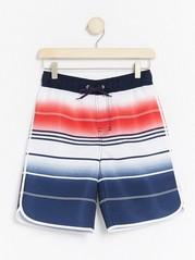 Striped Swim Shorts  Blue