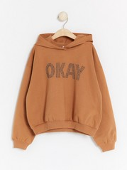 Hooded sweatshirt with front decoration Brown