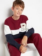 Sweatshirt med färgblock och frottéapplikation Blå