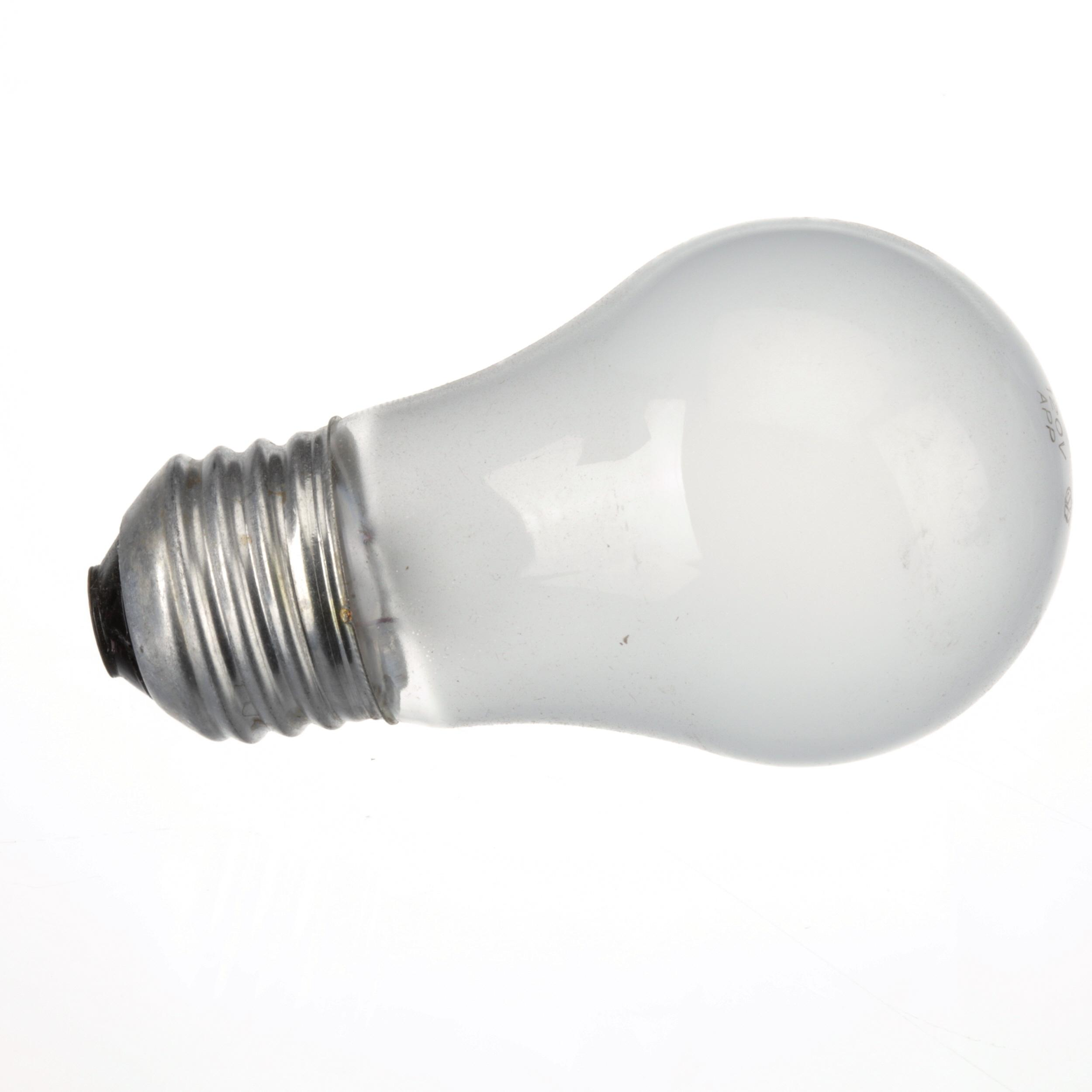 Garland Light Bulb 40w 120 Bx Part 1623900