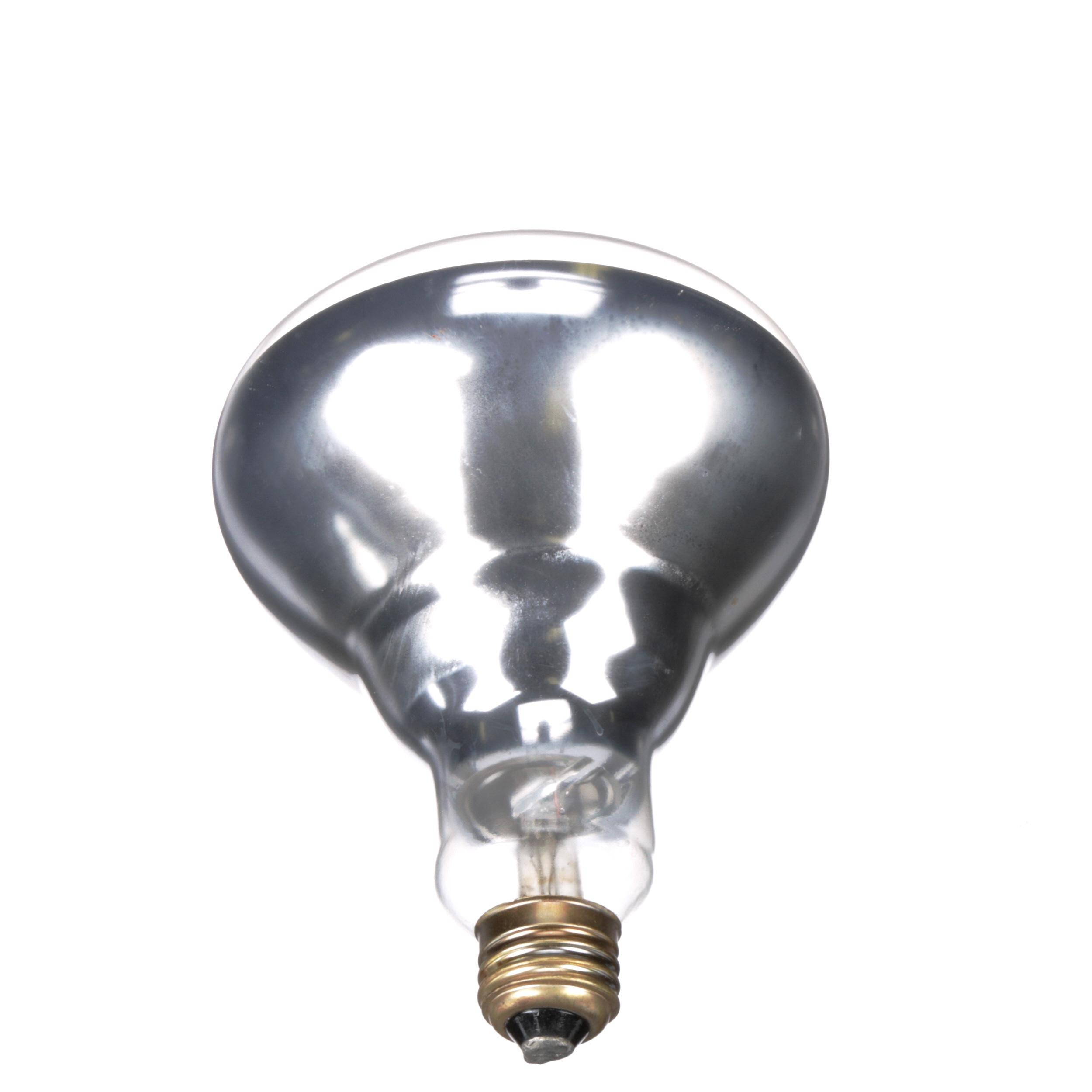 HATCO COATED BULB 250W
