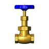 "T&S BRASS 1/2"" GLOBE VALVE, BLUE HANDLE"