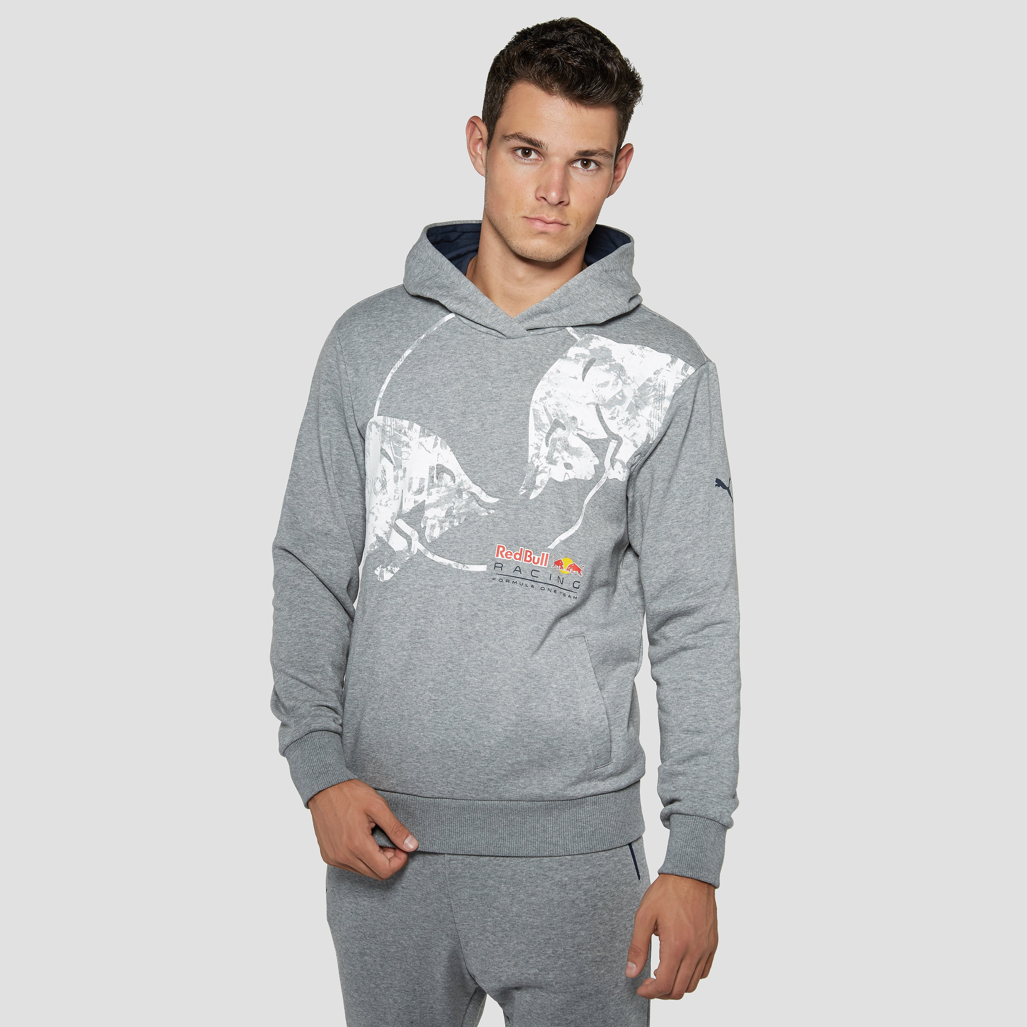 PUMA RED BULL RACING GRAPHIC TRUI GRIJS HEREN
