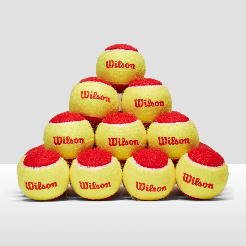 Wilson Starter Red Balls (36 Pack)