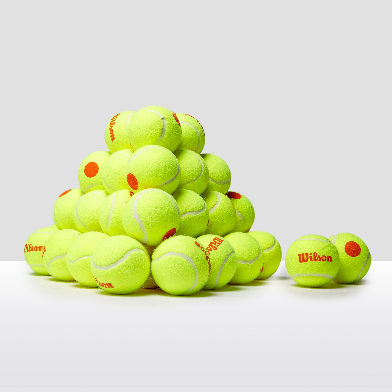 Wilson Starter Orange Balls (48 Pack)