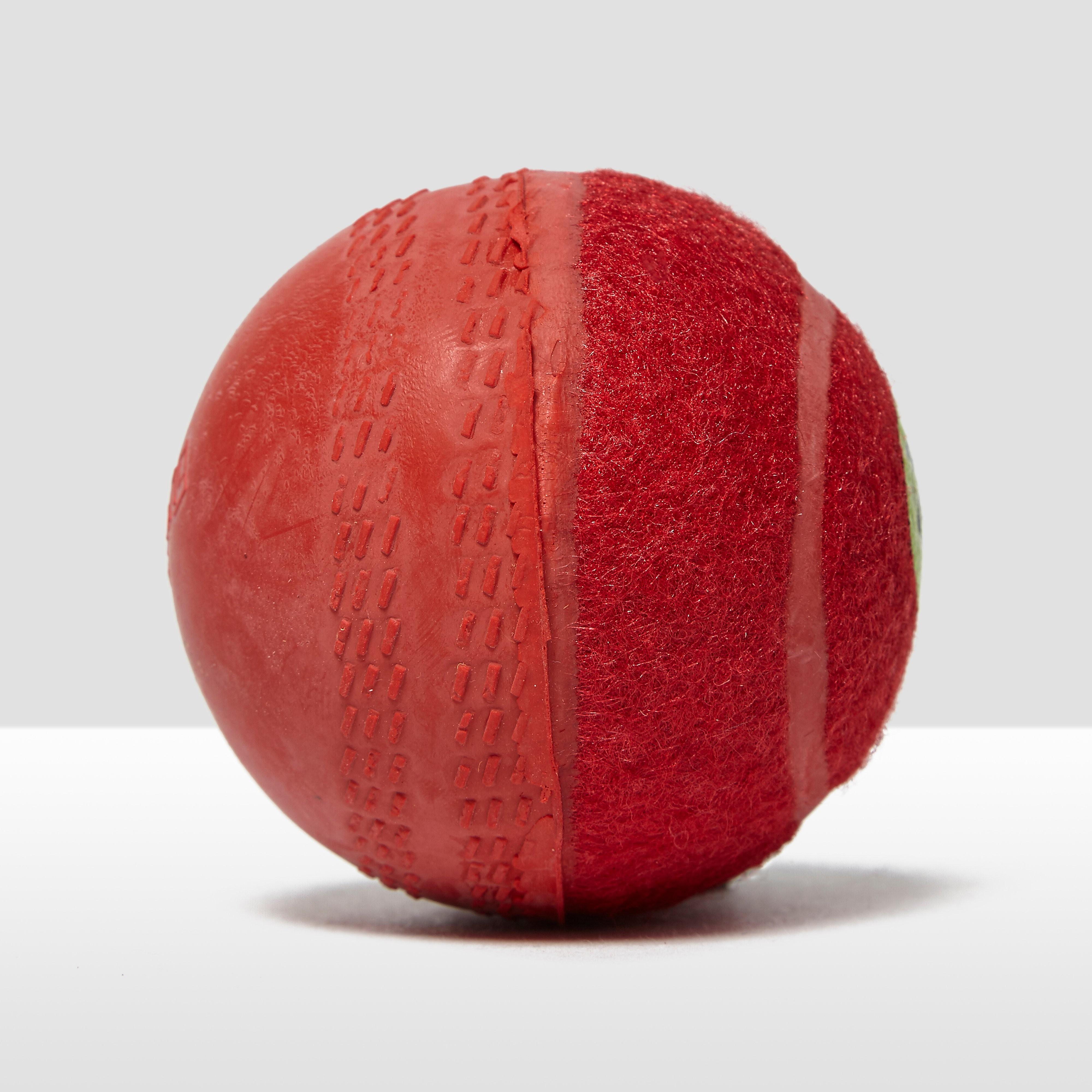 Gunn & Moore Swingking Cricket Ball