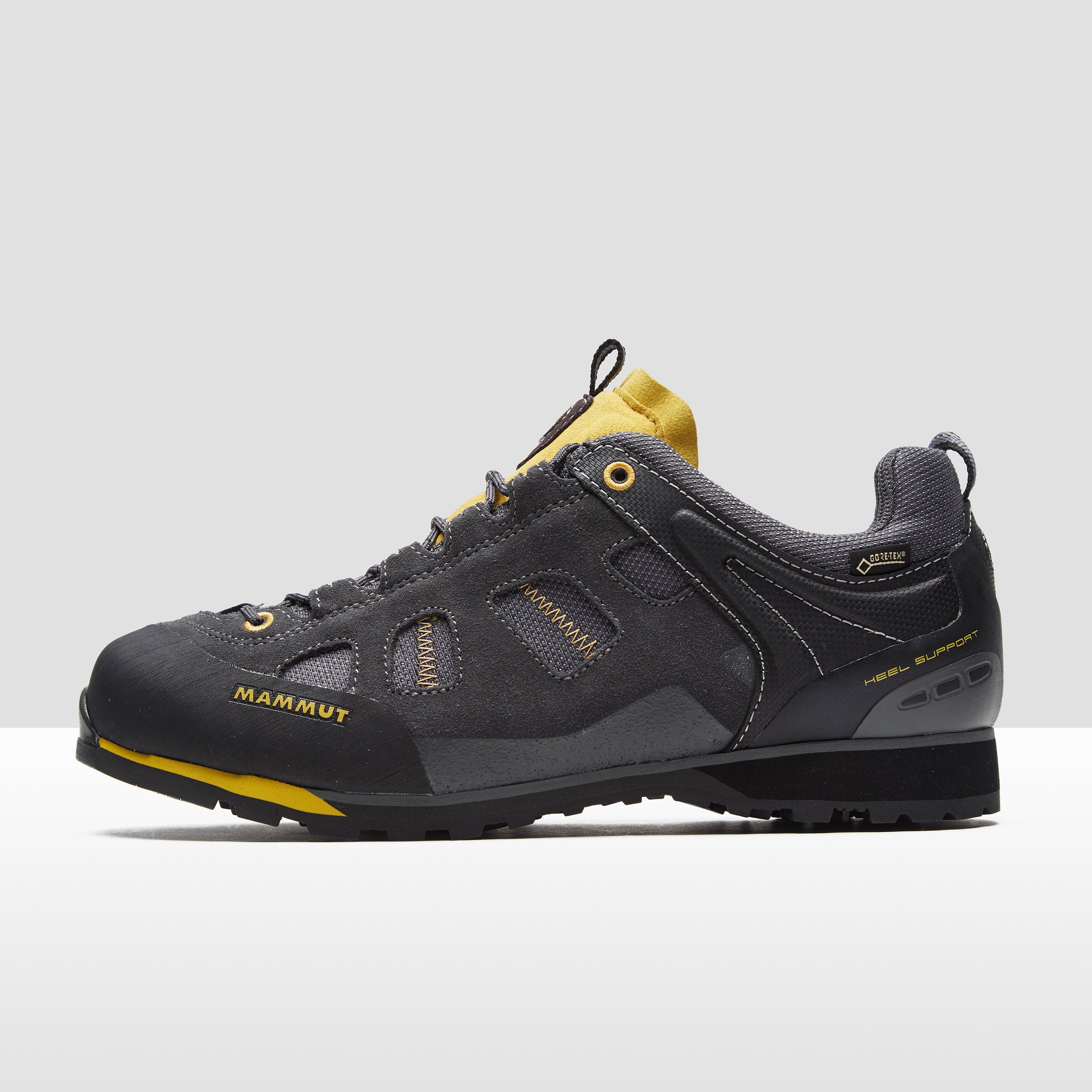 Mammut Ayako Low GTX Men's Shoes