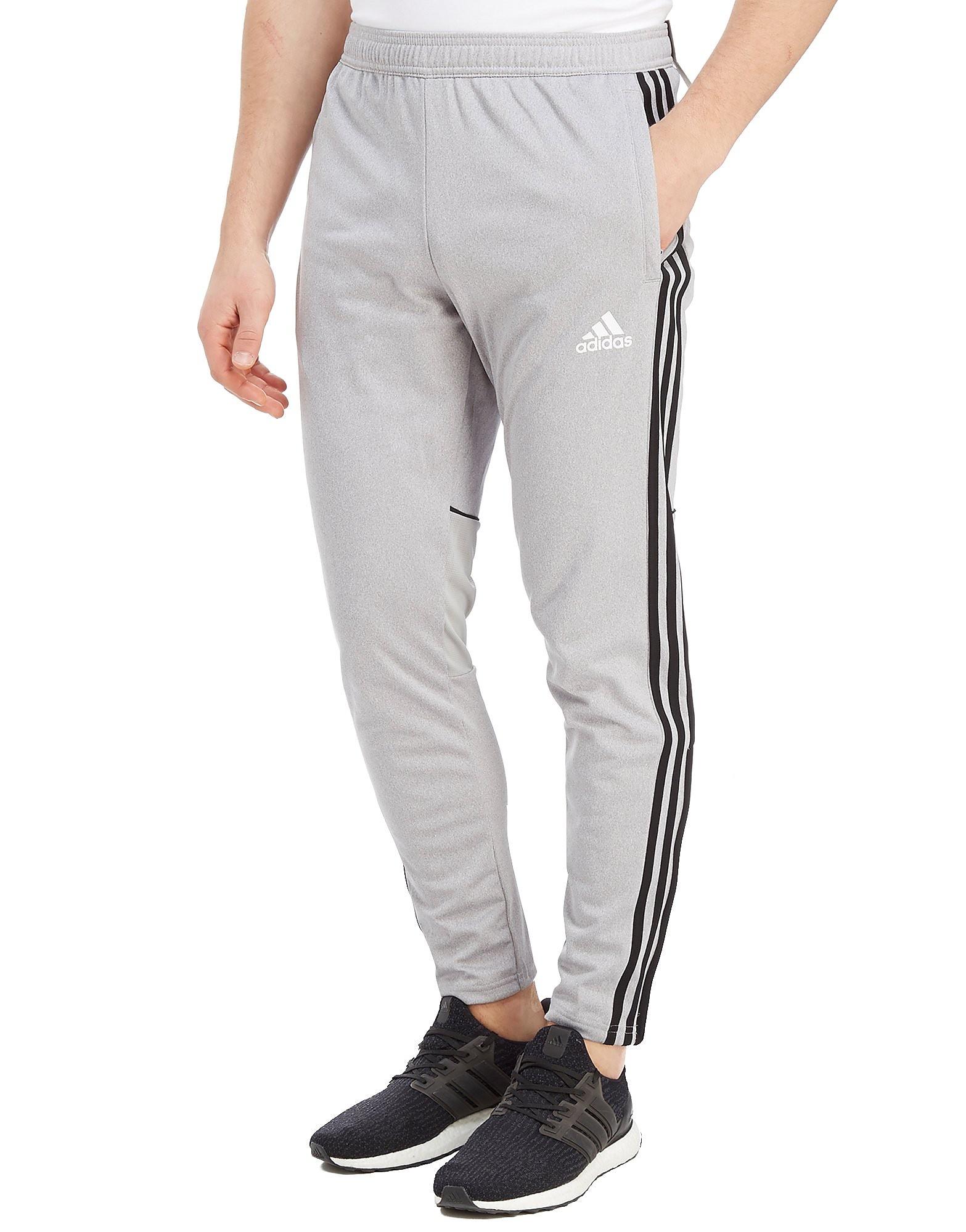 adidas Tango Pants Herre