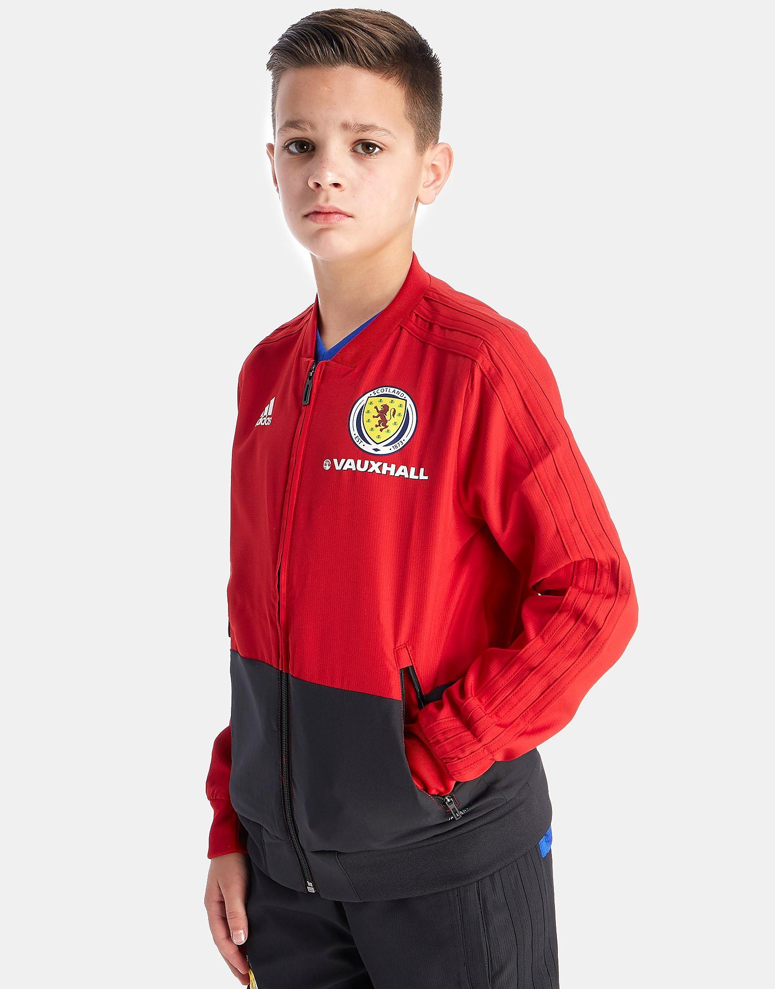 adidas chaqueta de presentación Escocia FA 2018 júnior