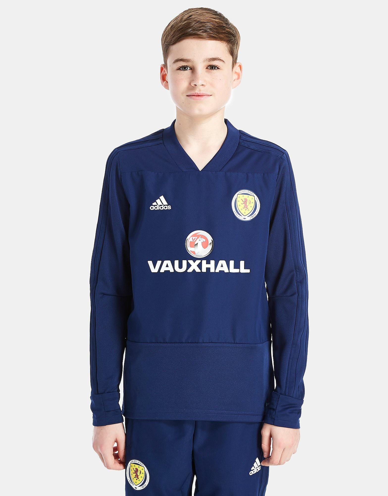 adidas camiseta de entrenamiento de Escocia FA 2018 júnior