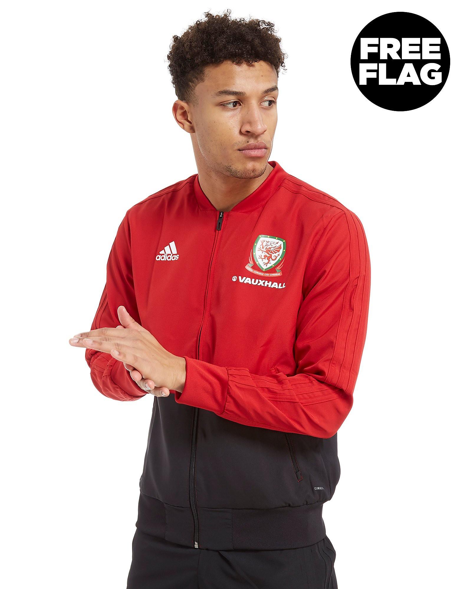 adidas chaqueta de presentación Gales 2018
