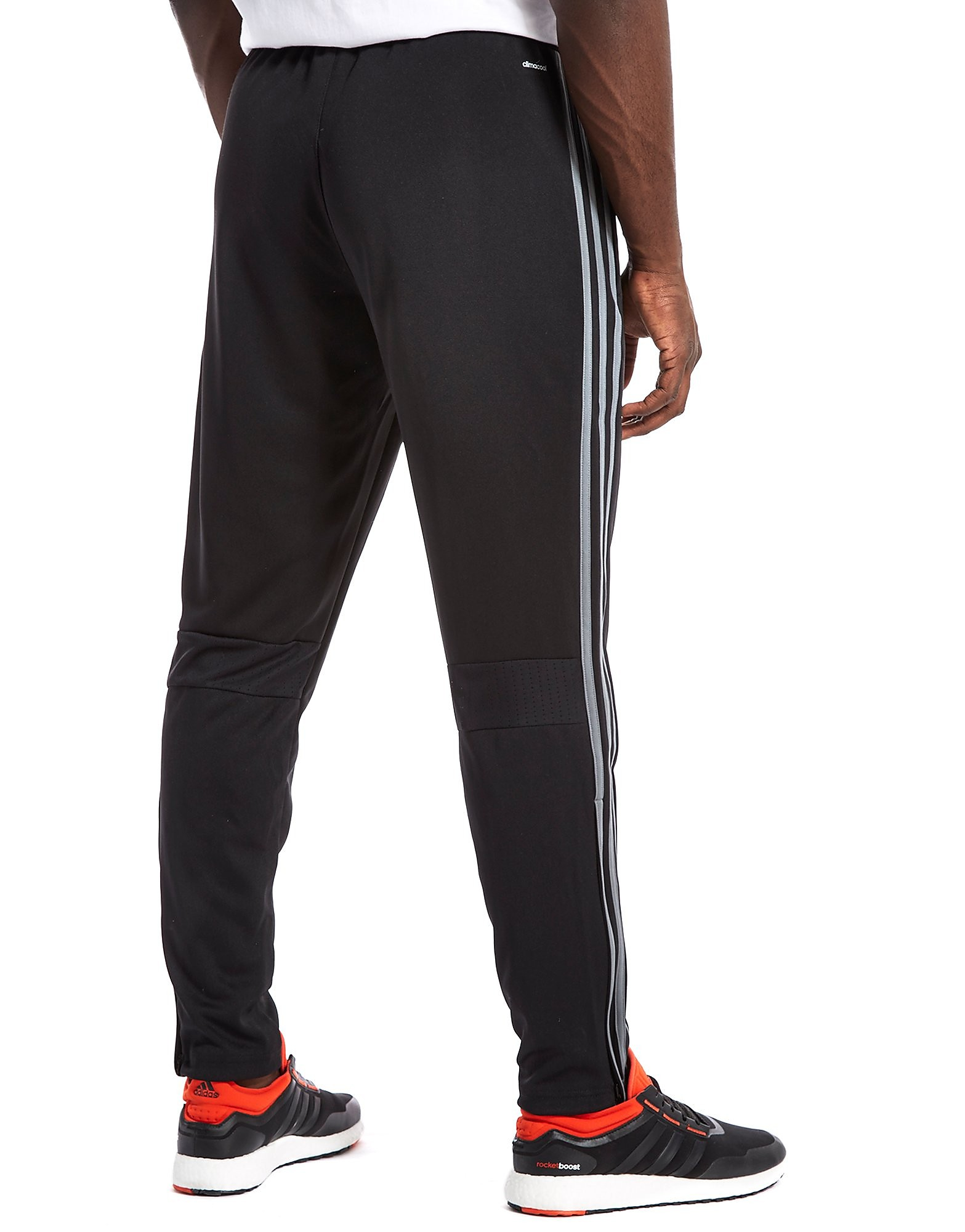 adidas Condivo 16 Poly Training Pants