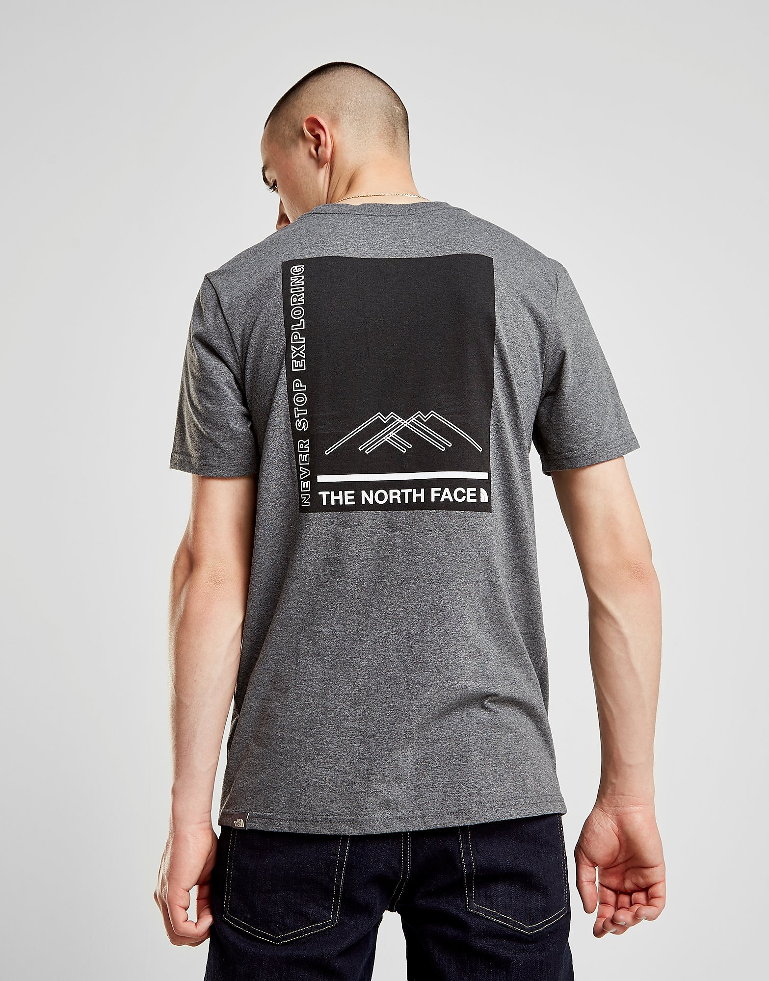 The North Face Mountain Box T-Shirt Heren