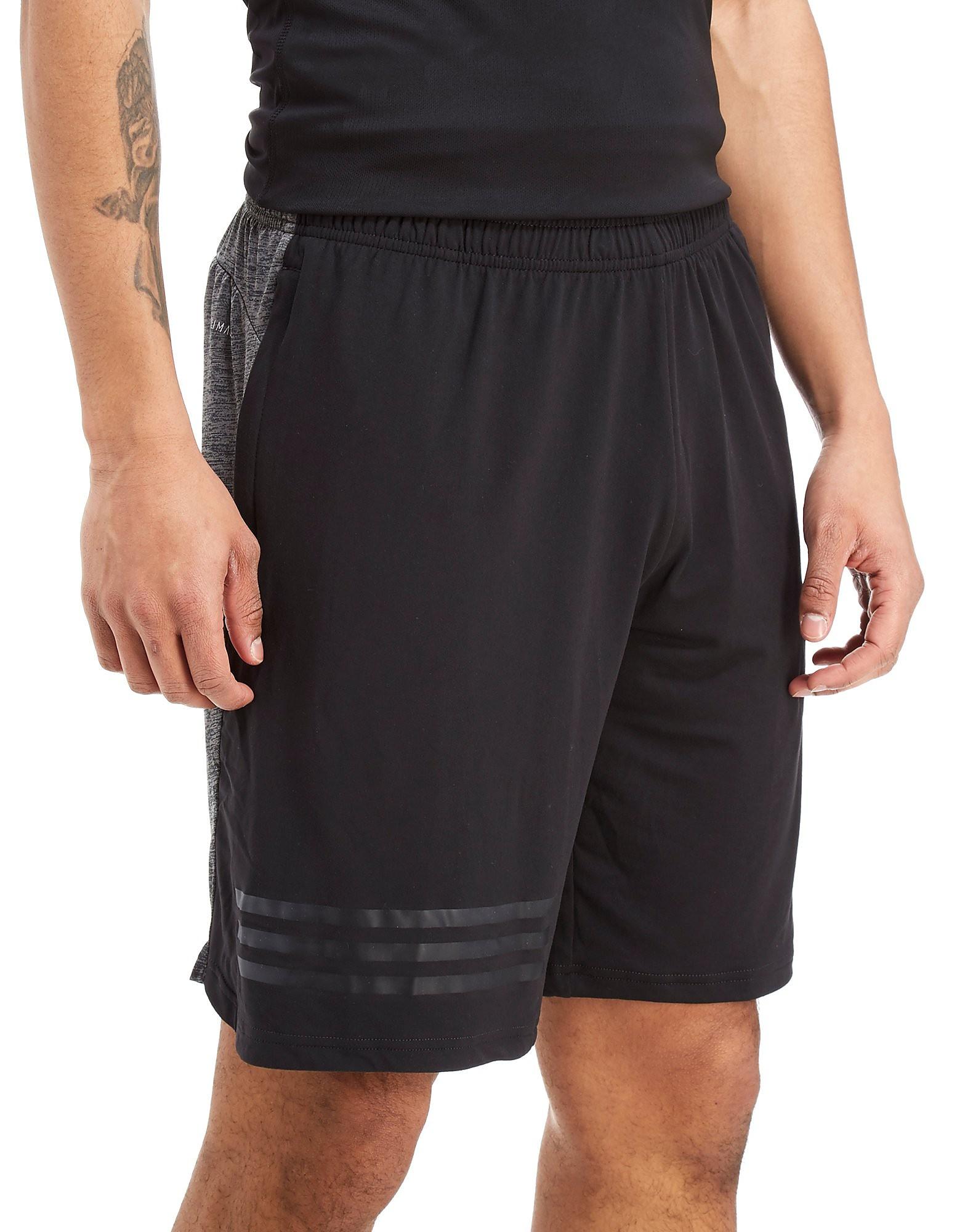 adidas 4KRFT Gradient Shorts