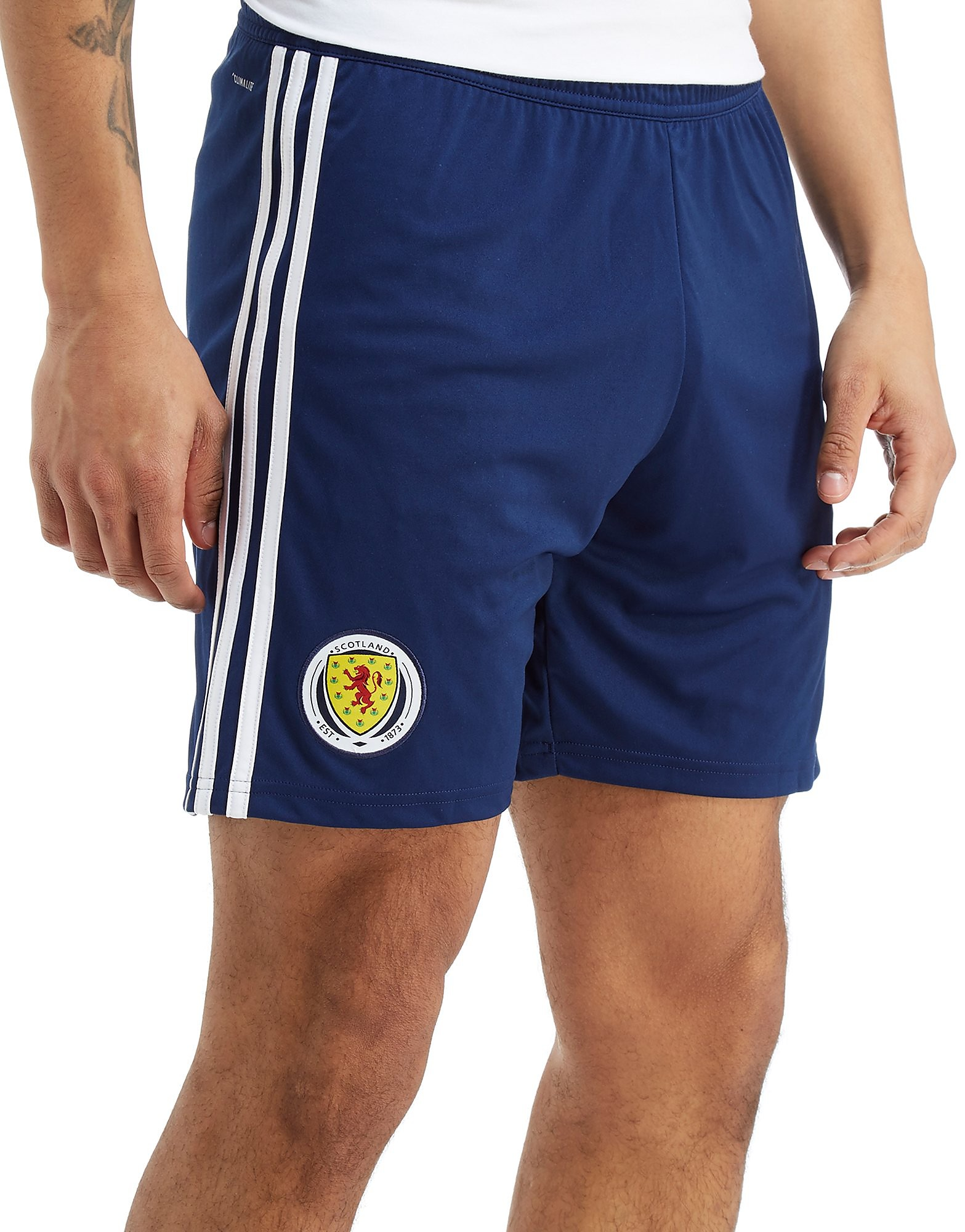 adidas Scotland FA 2018 Away Shorts Heren