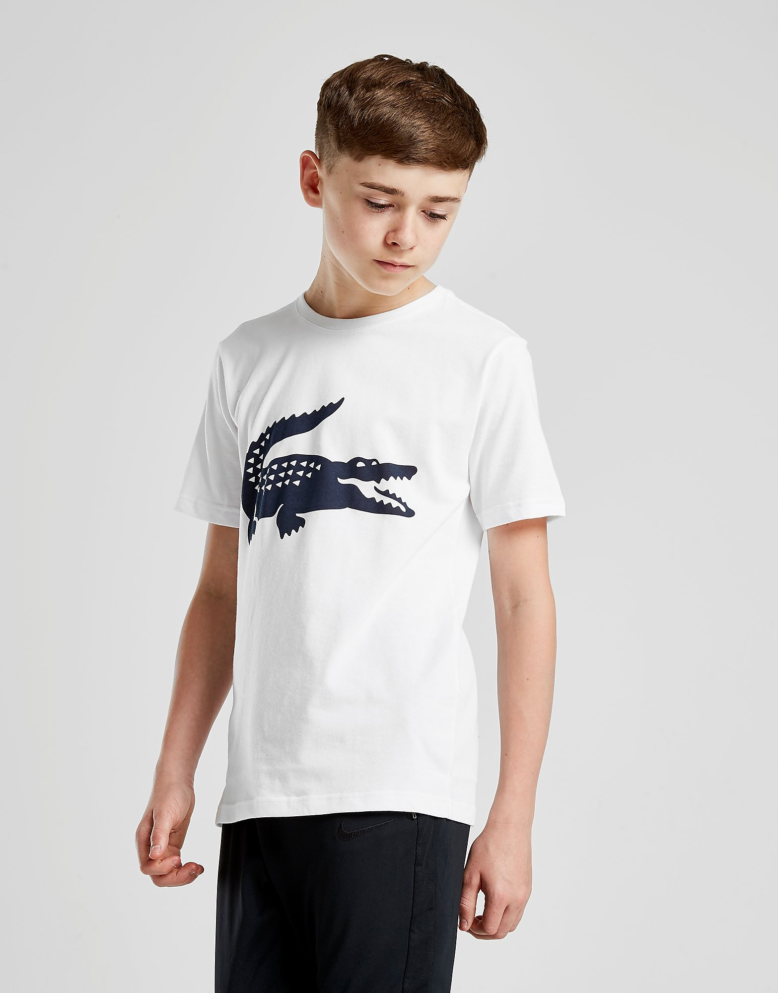 Lacoste Croc T-Shirt Junior - Wit - Kind