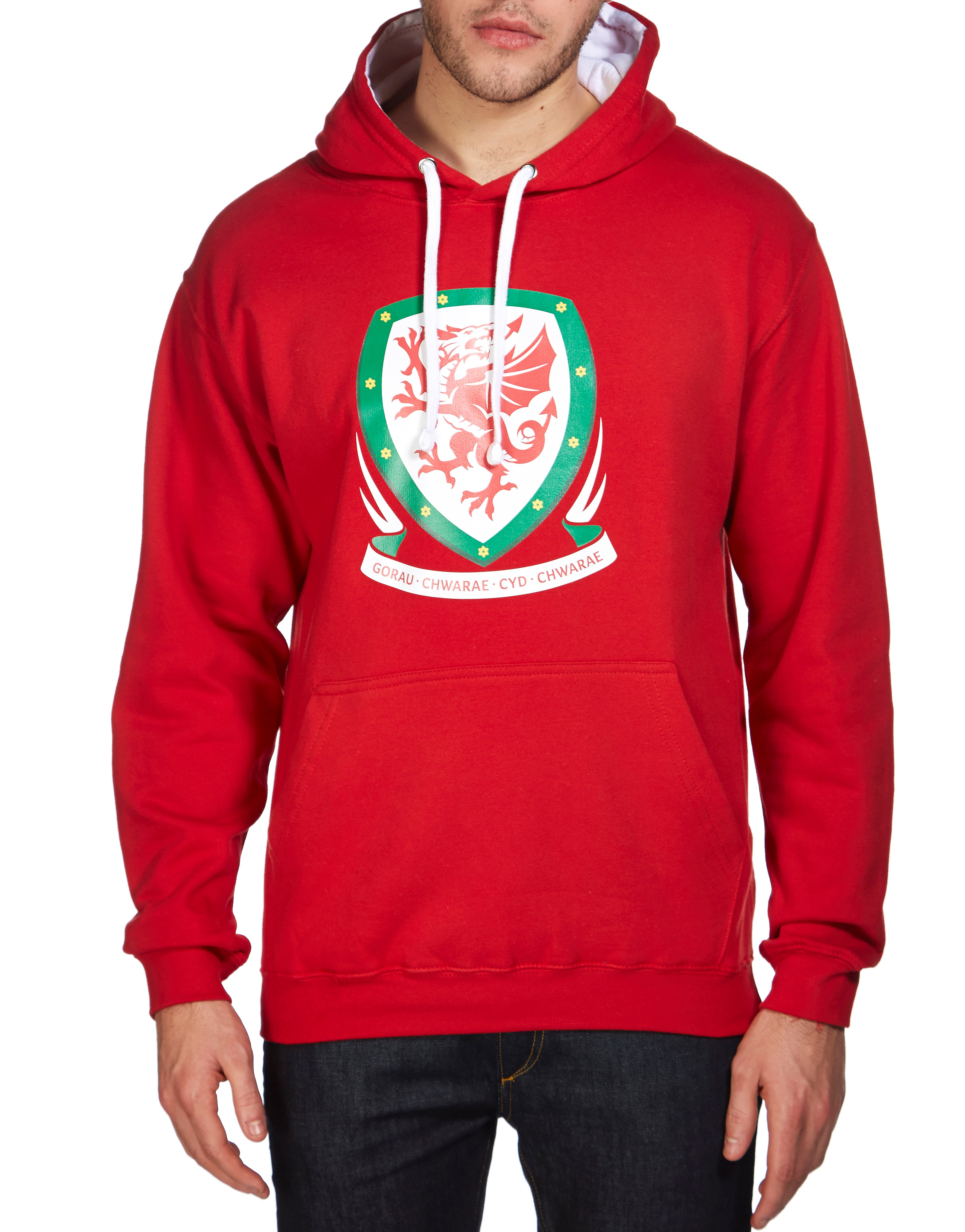 Official Team Wales Crest Hoodie