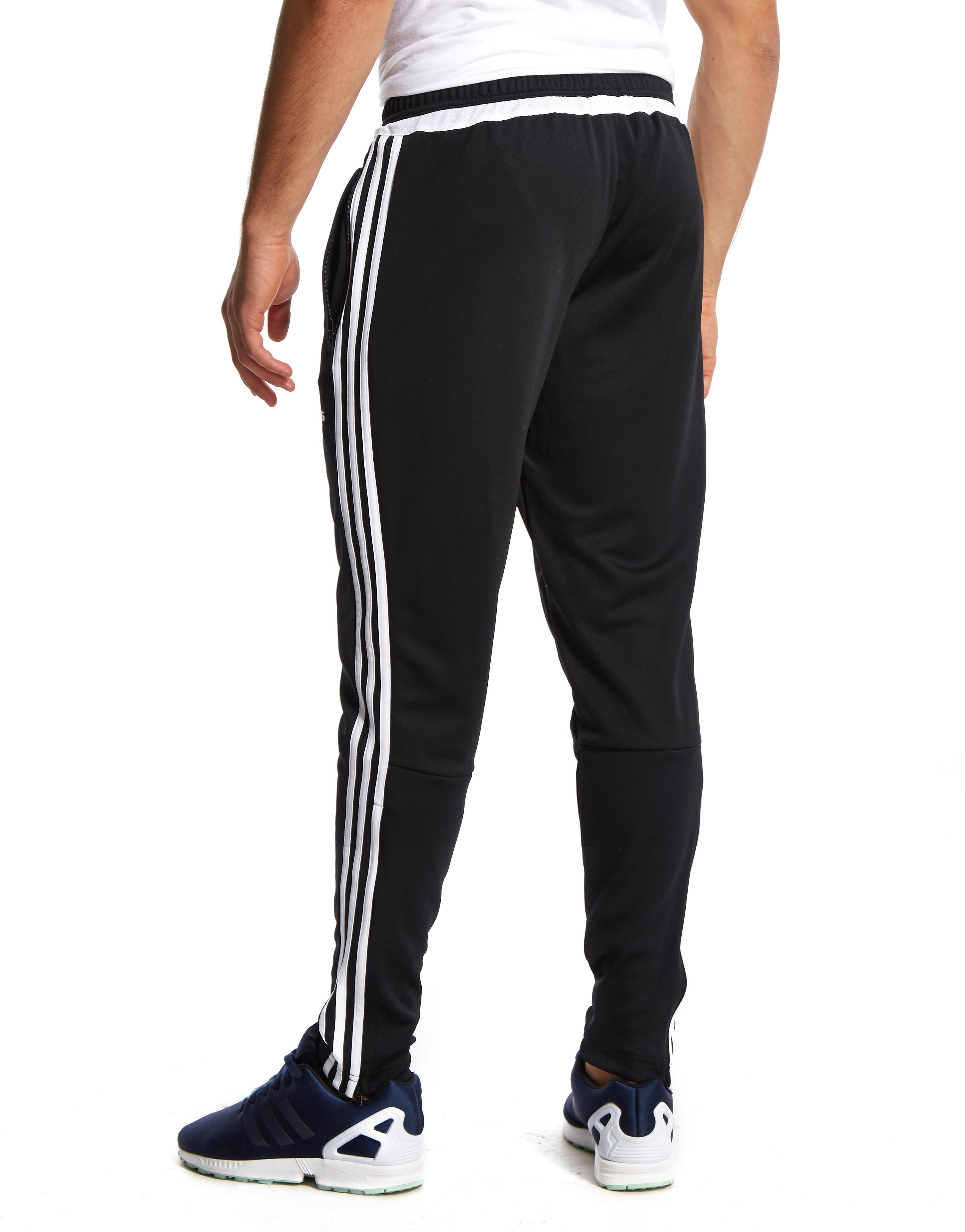 adidas Pantalones de entrenamiento del Scotland FA 2015/16